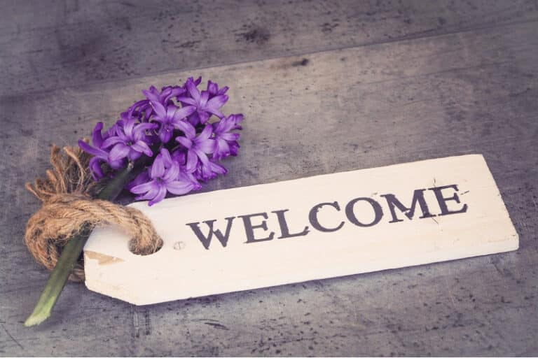 12 Must-Have Items to Put in Your Welcome Email