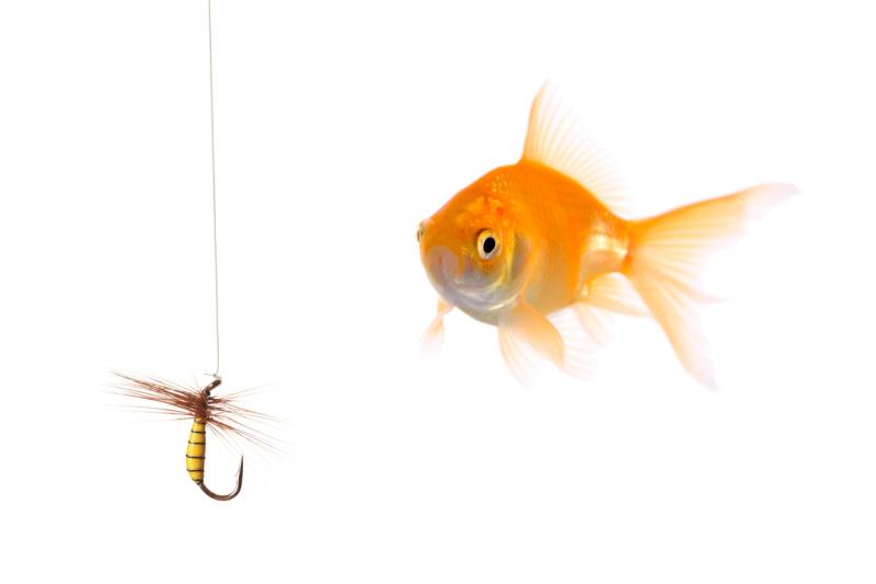 Beware! Big Phishing Scam Happening Now