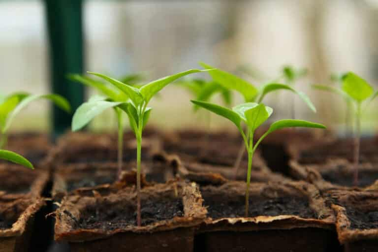 Great Article – 10 Ways To Grow Your Business